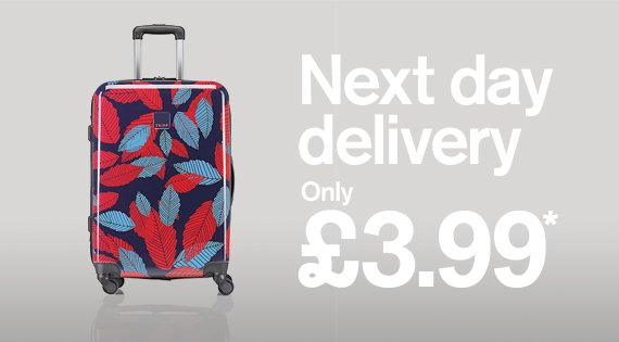Next Day Delivery only £3.99