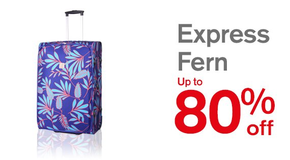 Express Fern Up to 80% off